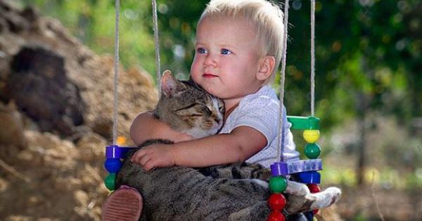 kanak-dan-kucing