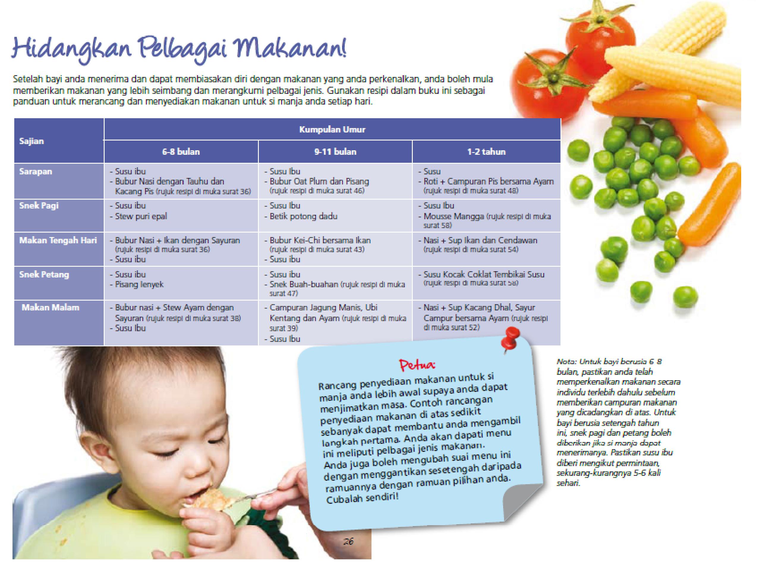 makanan pelengkap bayi 3