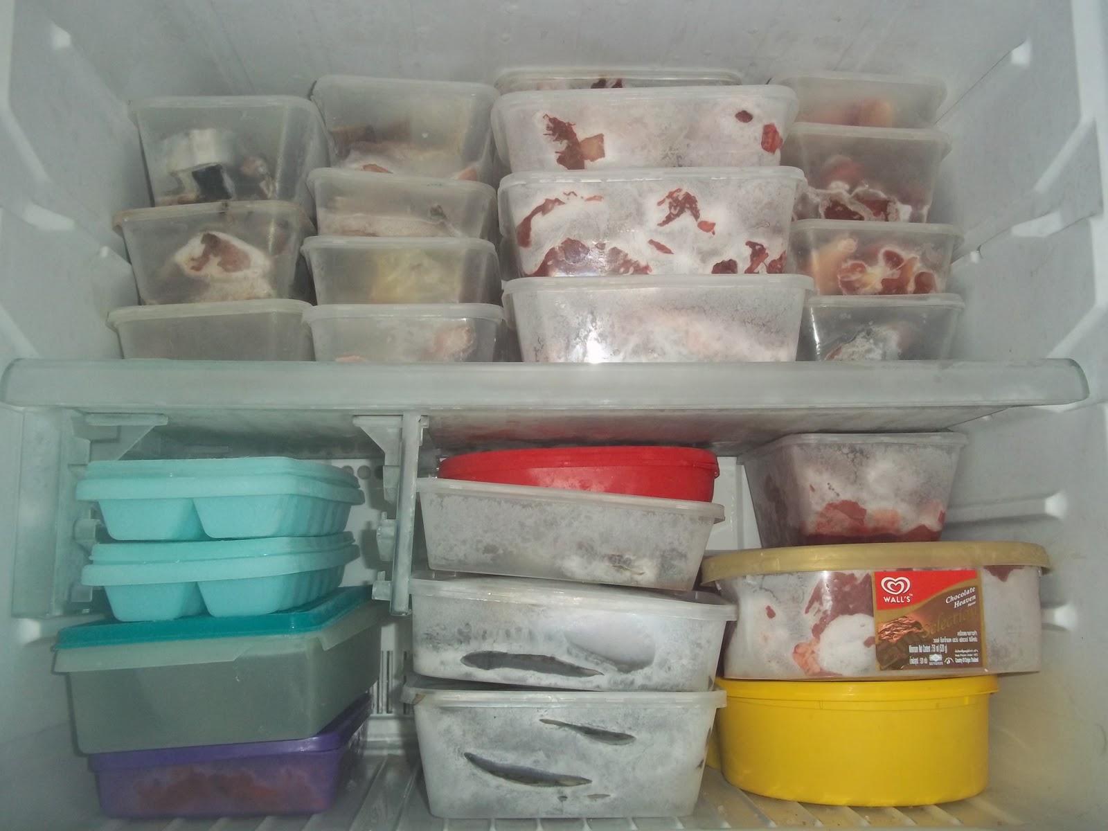 simpan ayam dalam peti ais